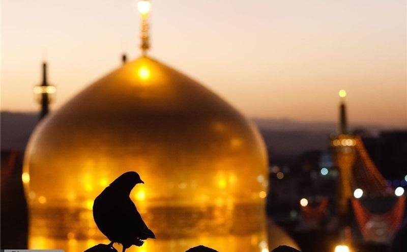 فرق اسلام و ایمان