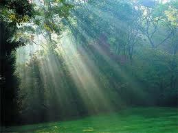 خلافتِ الهیِ انسان، محدود به زمین نیست