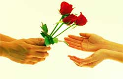 تقدیم گل