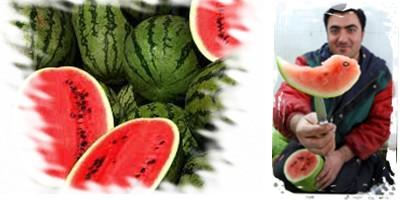 هندوانه به شرط چاقو