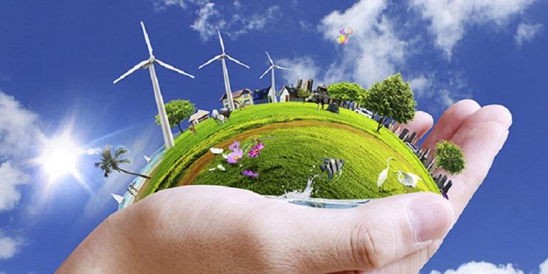 احترام محیط زیست