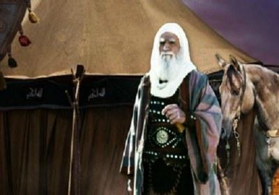 پیر میدان دار شیعه، حبیب بن مظاهر