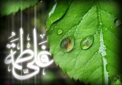 خواستگاری حضرت علی از دختر ابی جهل