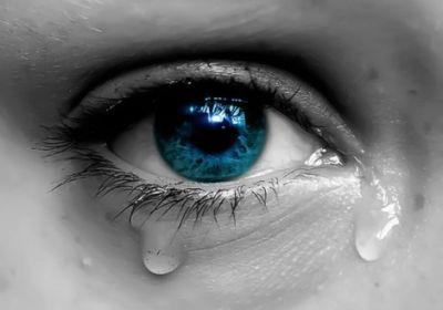 گریه بر..