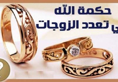 تعدد زوجات