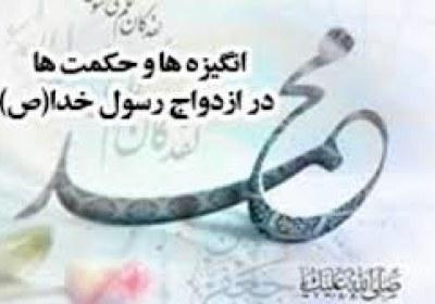 حکمت ها در ازدواج حضرت محمد(ص)