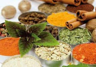 صادرات داروی گیاهی ایرانی آلزایمر به فرانسه
