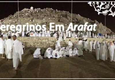 Os Peregrinos Em Arafat