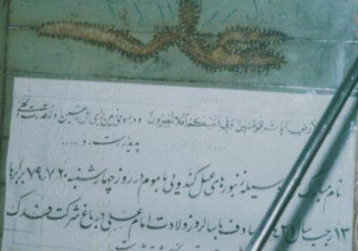 نام مبارک علی (ع)توسط زنبورهای عسل حک شده است