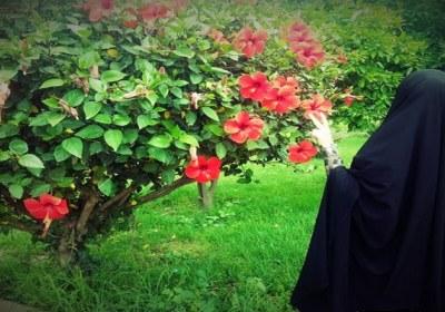 حجاب بانوی ایران