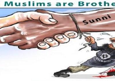 اتحادشیعه وسنی در مبارزه با تروریسم