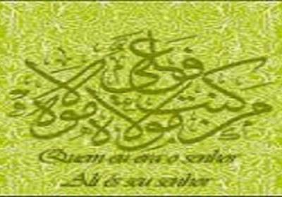 quem são os xiitas?