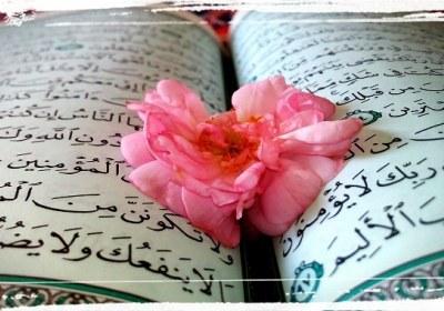 چرا قرآن به زبان عربی نازل شده؟