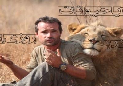 حیوان و انسان
