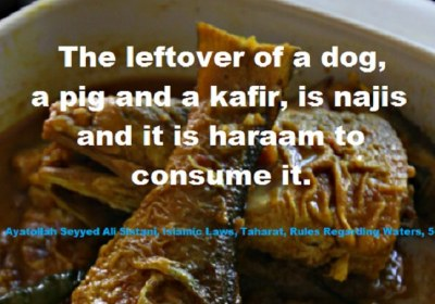 The Leftover of a Dog, a Pig and a Infidels