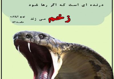 زخم زبان زدن