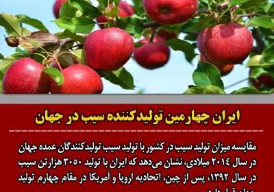 تولید سیب در ایران