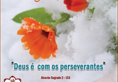 Deus é com os perseverantes  Alcorão Sagrado