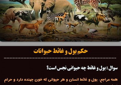 غائط حیوانات