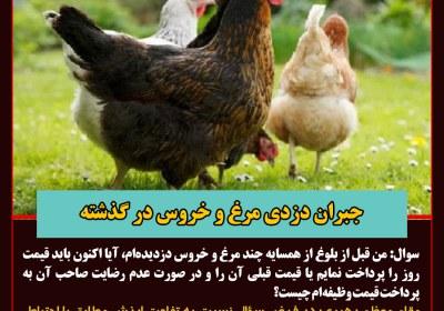 دزدی مرغ