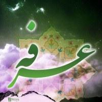هرکس از ماه رمضان جامانده است و حس میکند نتوانسته از بخشش خداوند نصیبی ببرد، هنوز روز عرفه را برای جبران، فرصت دارد.