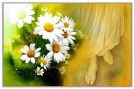 یا ابا صالح دلم را عشق تو کرده هوایی