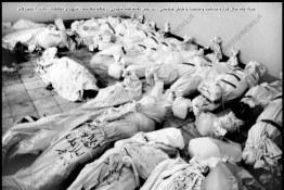 قتل عام زائران خدا در حریم امن الهی