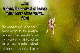 The House of the Spider: A Scientific Miracle of the Qur'an