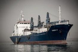 توقیف کشتی بزرگ صید ماهی توسط سپاه