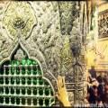 Тавассуль к имаму Ризе среди суннитских ученых