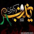Зайнаб бинт Али ибн Абу Талиб