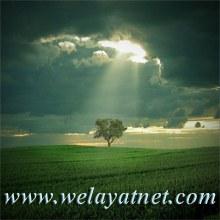 تصویر welayatnet