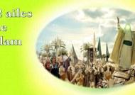 LES 2 AILES DE L'ISLAM