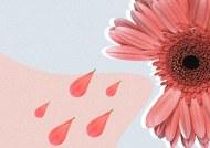 Haydh (menstruação)- Ahkam em resumo